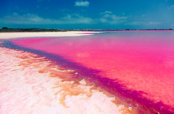 El lago rosa de Yucatán Captura de pantalla 2018 04 11 a las 11