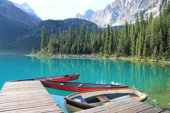 """""""El pequeño parque de las maravillas"""" lake o hara"""