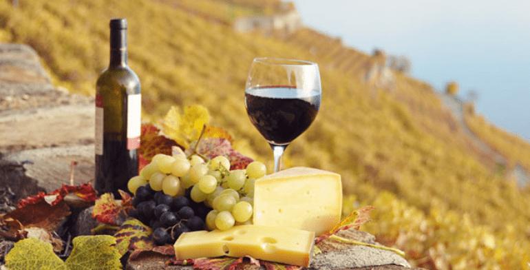 Ruta del queso y el vino, Querétaro large 2015092640 Tercera Gratis Ruta del Vino y queso Medium