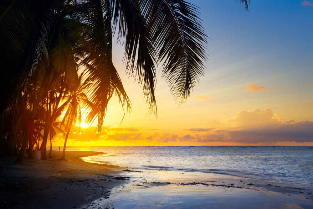 Playa Paraíso, Tabasco paraisotabasco